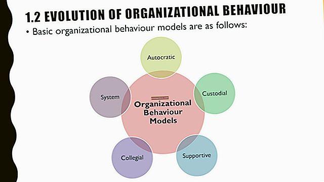 Concetti importanti di comportamento organizzativo per un nuovo manager