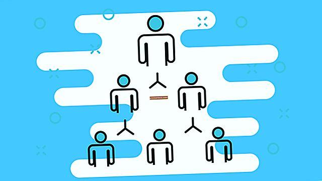 Qual è il rapporto tra funzioni organizzative e struttura organizzativa?