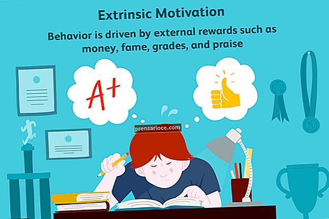 Quali sono i componenti di un sistema completo di premi e motivazione totali?